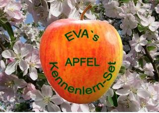 EVA's Apfelgarten Set