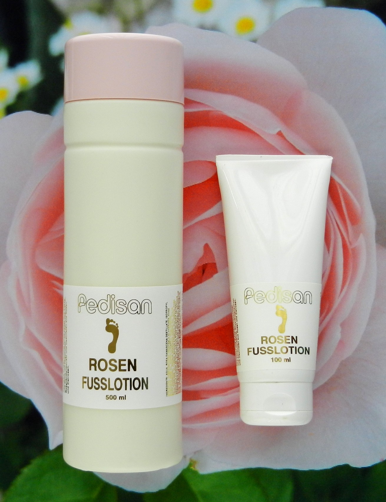 ROSEN FUSSLOTION